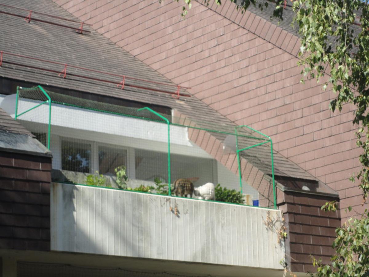 cl ture anti fugue pour terrasses. Black Bedroom Furniture Sets. Home Design Ideas